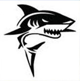 Sharks Den Team building